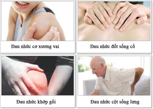 Chữa đau nhức xương khớp với Thoái Cốt Hoàn